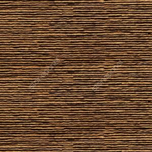 Rayas / CHİARO - DZ-001-4307