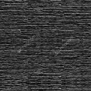 Rayas / NEGRA - DZ-001-4321