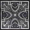 Altera / ARGENT LİME - DZ-002-5003